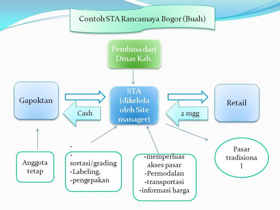 Contoh STA Rancamaya Bogor (Buah) Gapoktan STA (dikelola oleh Site manager ) STA (dikelola oleh Site manager ) Retail Pembina dari Dinas Kab. Pasar tr