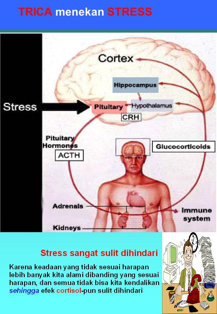 TRICA menekan STRESS