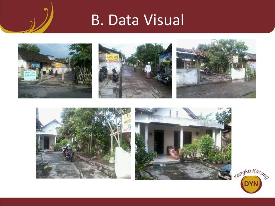 B. Data Visual