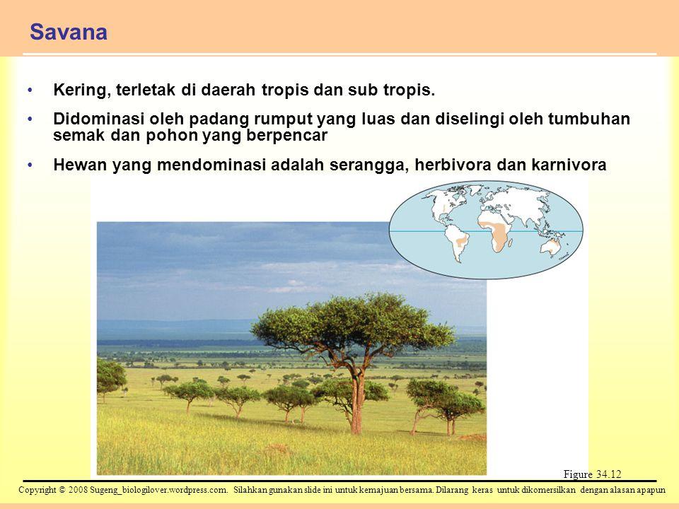 Copyright © 2008 Sugeng_biologilover.wordpress.com. Silahkan gunakan slide ini untuk kemajuan bersama. Dilarang keras untuk dikomersilkan dengan alasa