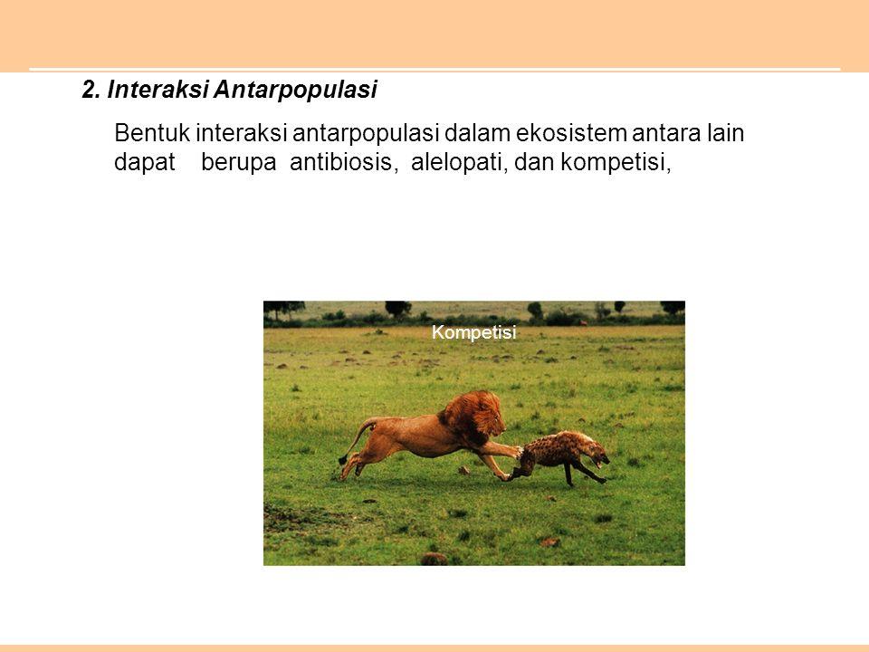 2. Interaksi Antarpopulasi Bentuk interaksi antarpopulasi dalam ekosistem antara lain dapat berupa antibiosis, alelopati, dan kompetisi, Kompetisi