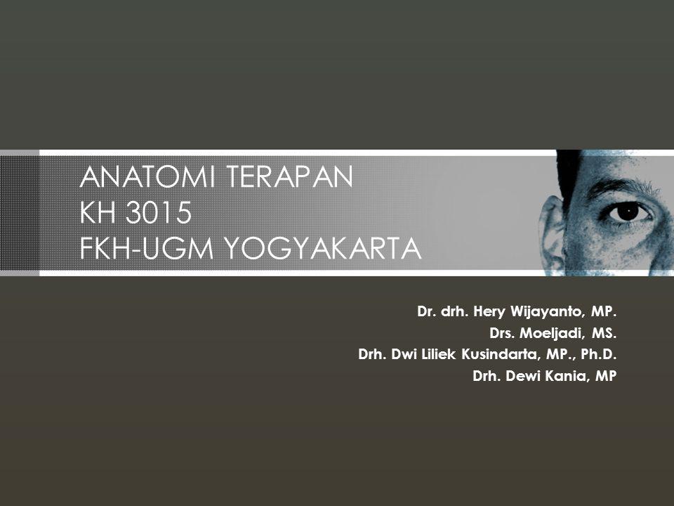 Identitas matakuliah 1.Nama Matakuliah: Anatomi Terapan 2.