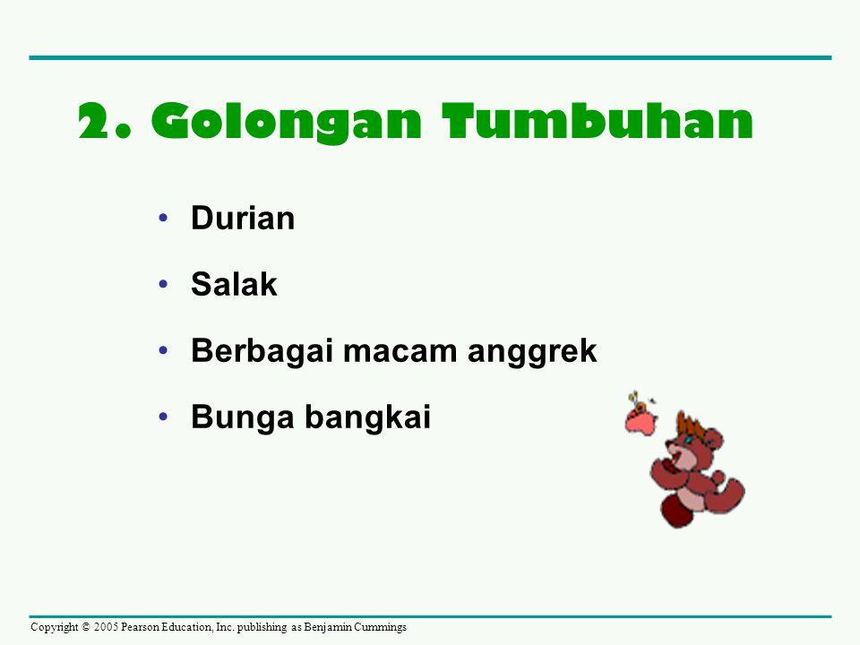Copyright © 2005 Pearson Education, Inc. publishing as Benjamin Cummings •Durian •Salak •Berbagai macam anggrek •Bunga bangkai 2. Golongan Tumbuhan