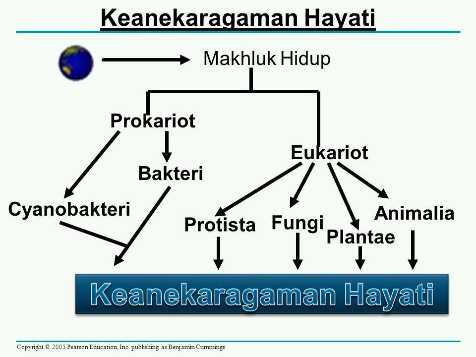 Copyright © 2005 Pearson Education, Inc. publishing as Benjamin Cummings Makhluk Hidup Prokariot Eukariot Cyanobakteri Bakteri Protista Fungi Plantae