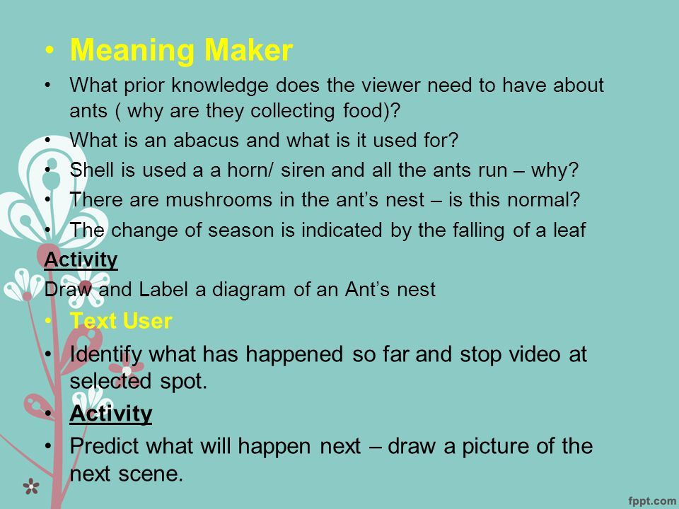 •Meaning Maker •What prior knowledge does the viewer need to have about ants ( why are they collecting food).