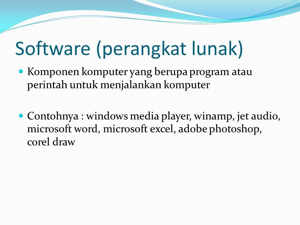 Software (perangkat lunak)  Komponen komputer yang berupa program atau perintah untuk menjalankan komputer  Contohnya : windows media player, winamp