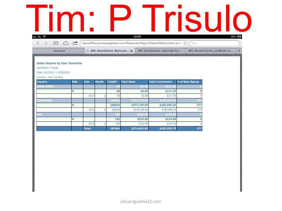 Tim: P Trisulo peluangusaha21.com