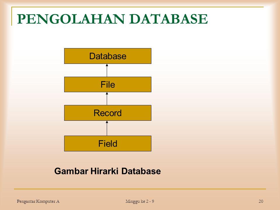 Pengantar Komputer A Minggu ke 2 - 9 20 PENGOLAHAN DATABASE Database File Record Field Gambar Hirarki Database