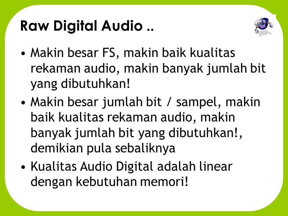 Raw Digital Audio..
