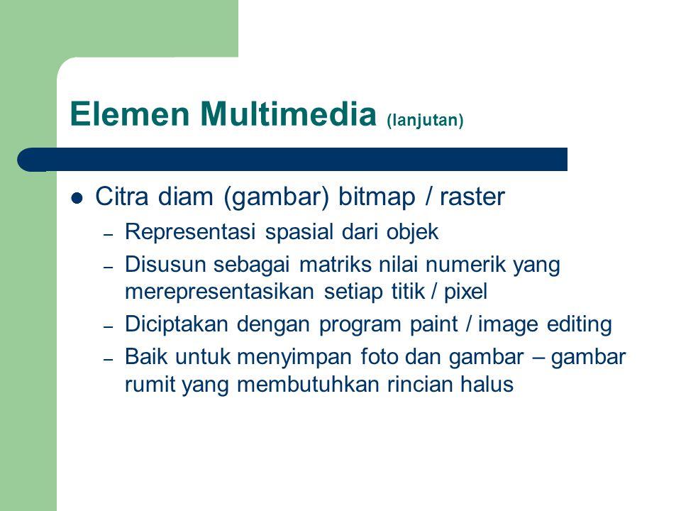 Elemen Multimedia (lanjutan)  Citra diam (gambar) bitmap / raster – Representasi spasial dari objek – Disusun sebagai matriks nilai numerik yang mere
