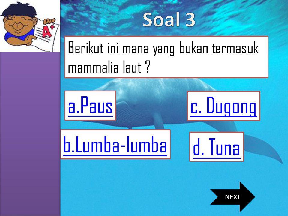 MENU SKKD SIMULASI SOAL MATERI VIDEO PROFIL b.Lumba-lumba a.Paus d. Tuna Berikut ini mana yang bukan termasuk mammalia laut ? c. Dugong NEXT