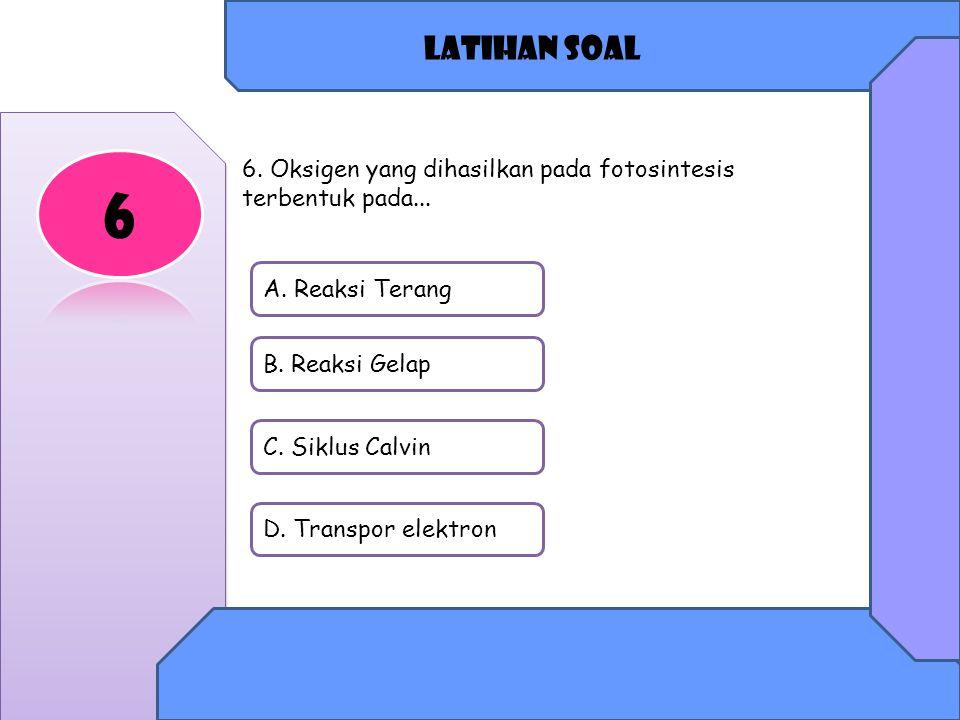 Latihan soal A.Reaksi Terang B. Reaksi Gelap C. Siklus Calvin D.