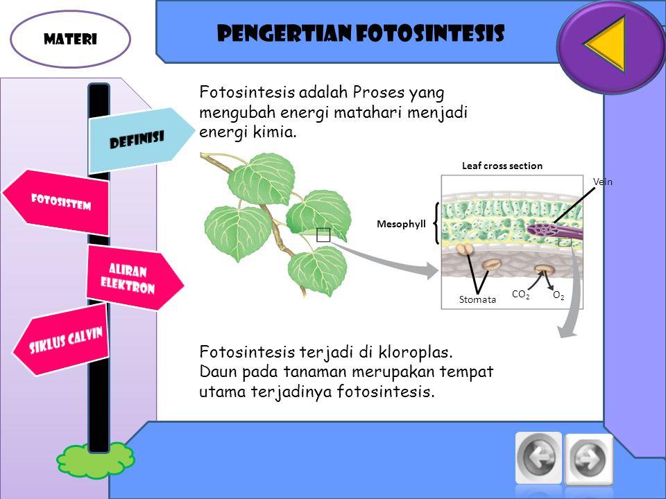 PENGERTIAN fotosintesis MATERI Fotosintesis adalah Proses yang mengubah energi matahari menjadi energi kimia.
