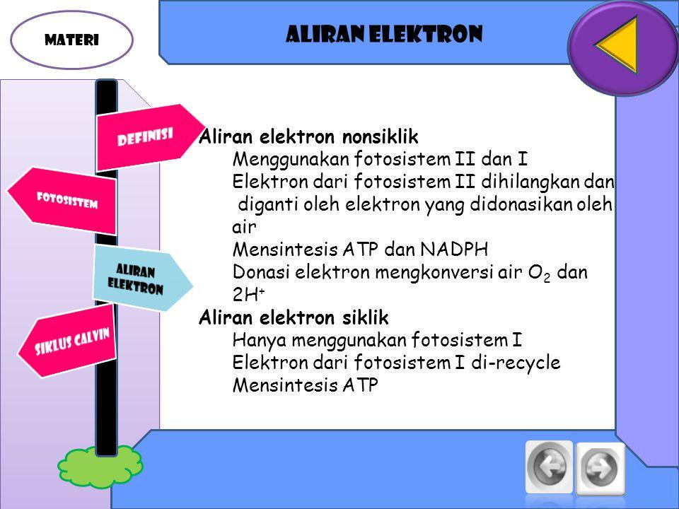 Aliran elektron Aliran elektron nonsiklik Menggunakan fotosistem II dan I Elektron dari fotosistem II dihilangkan dan diganti oleh elektron yang didonasikan oleh air Mensintesis ATP dan NADPH Donasi elektron mengkonversi air O 2 dan 2H + Aliran elektron siklik Hanya menggunakan fotosistem I Elektron dari fotosistem I di-recycle Mensintesis ATP