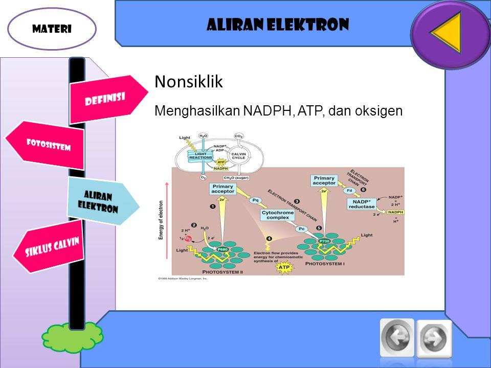 MATERI Aliran elektron Nonsiklik Menghasilkan NADPH, ATP, dan oksigen