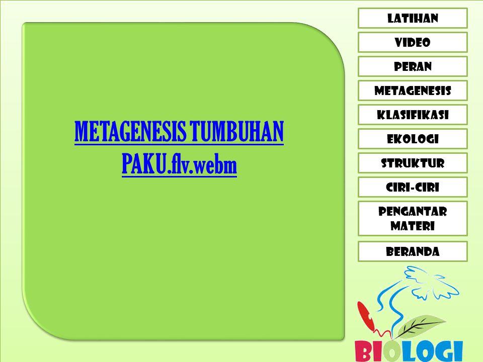 CIRI-CIRI LATIHAN VIDEO peran metagenesis klasifikasi EKOLOGI STRUKTUR PENGANTAR MATERI BERANDA METAGENESIS TUMBUHAN PAKU.flv.webm