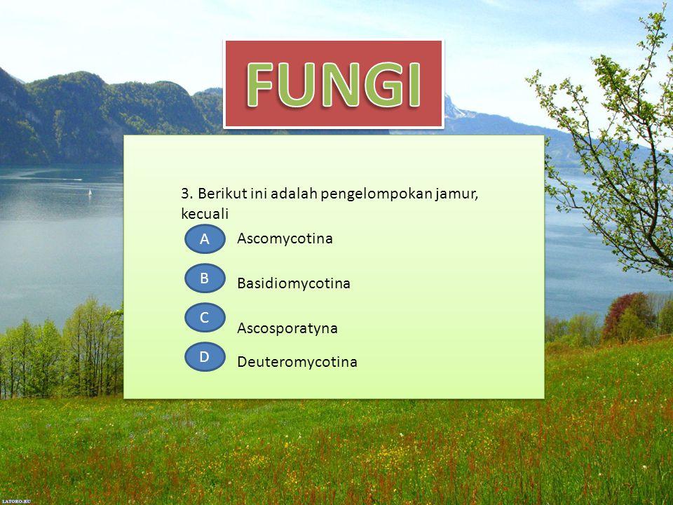 3. Berikut ini adalah pengelompokan jamur, kecuali A B C D Ascomycotina Ascosporatyna Deuteromycotina Basidiomycotina