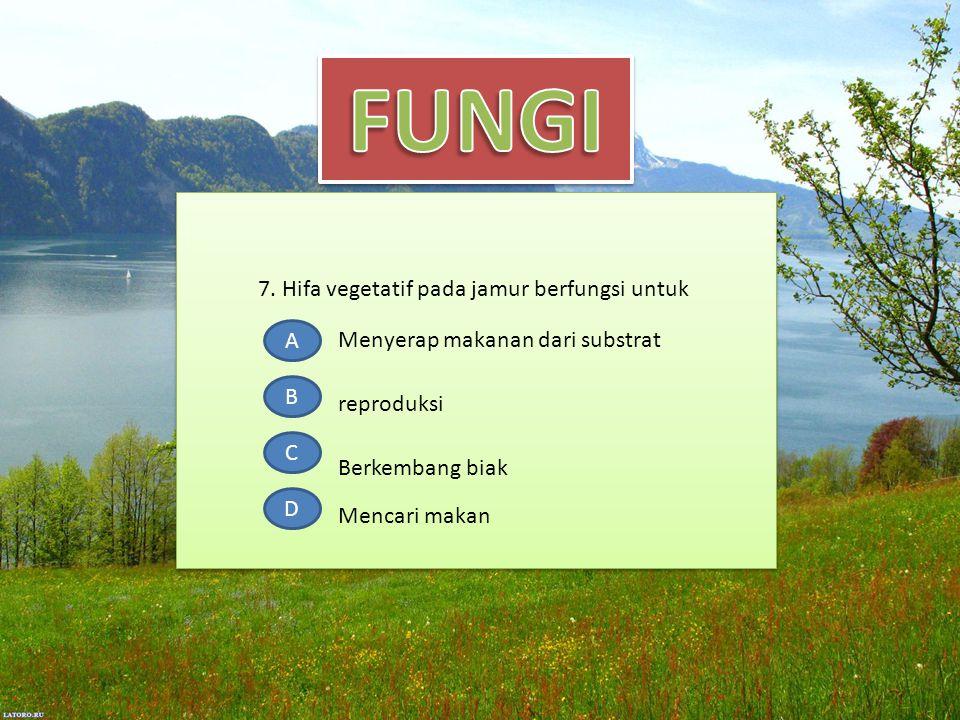 7. Hifa vegetatif pada jamur berfungsi untuk A B C D Menyerap makanan dari substrat Berkembang biak Mencari makan reproduksi