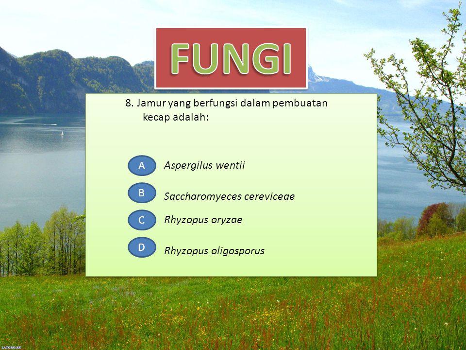 8. Jamur yang berfungsi dalam pembuatan kecap adalah: A B C D Aspergilus wentii Rhyzopus oryzae Rhyzopus oligosporus Saccharomyeces cereviceae