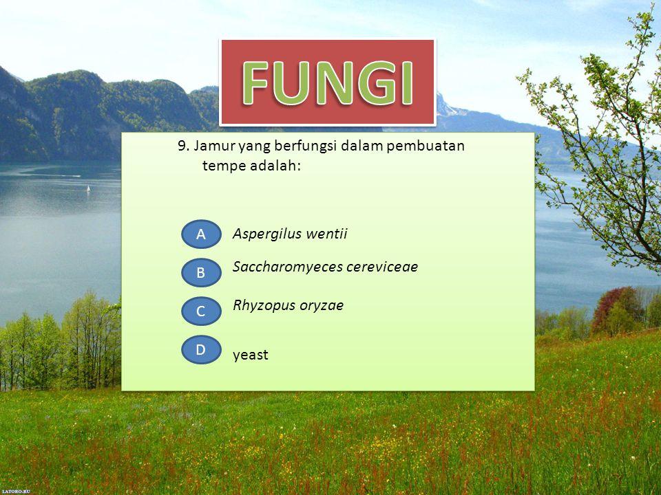 9. Jamur yang berfungsi dalam pembuatan tempe adalah: A B C D Aspergilus wentii Rhyzopus oryzae yeast Saccharomyeces cereviceae