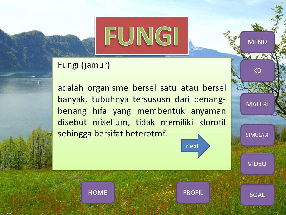 Fungi (jamur) adalah organisme bersel satu atau bersel banyak, tubuhnya tersususn dari benang- benang hifa yang membentuk anyaman disebut miselium, tidak memiliki klorofil sehingga bersifat heterotrof.