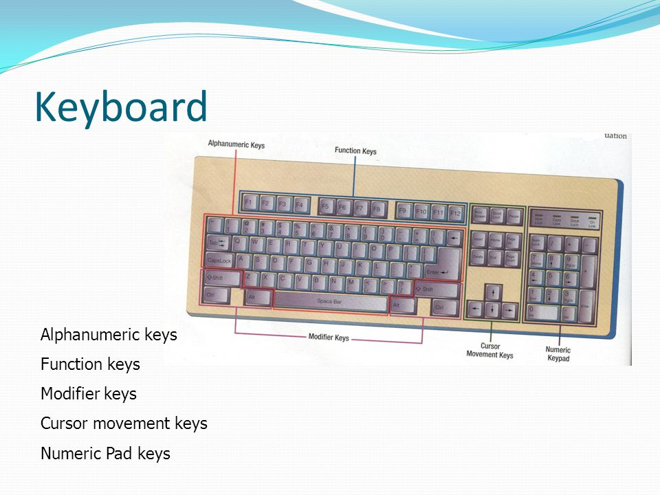 Keyboard Alphanumeric keys Function keys Modifier keys Cursor movement keys Numeric Pad keys