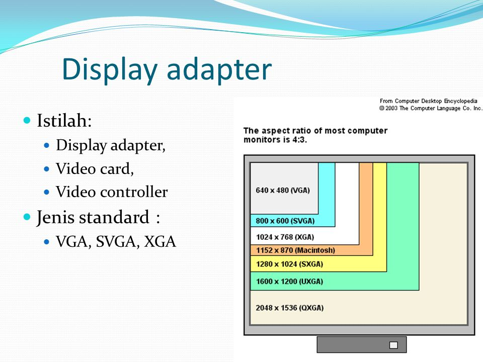 Display adapter  Istilah:  Display adapter,  Video card,  Video controller  Jenis standard :  VGA, SVGA, XGA