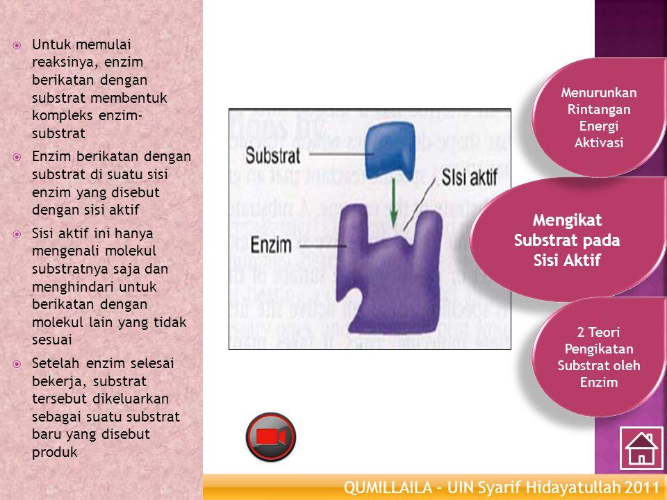 QUMILLAILA – UIN Syarif Hidayatullah 2011 Enzim Metabolisme  Untuk memulai reaksinya, enzim berikatan dengan substrat membentuk kompleks enzim- subst