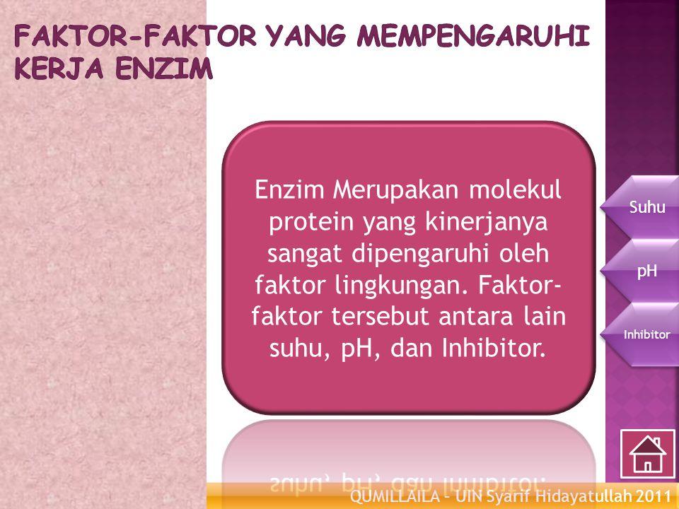 QUMILLAILA – UIN Syarif Hidayatullah 2011 Enzim Metabolisme Suhu pH Inhibitor