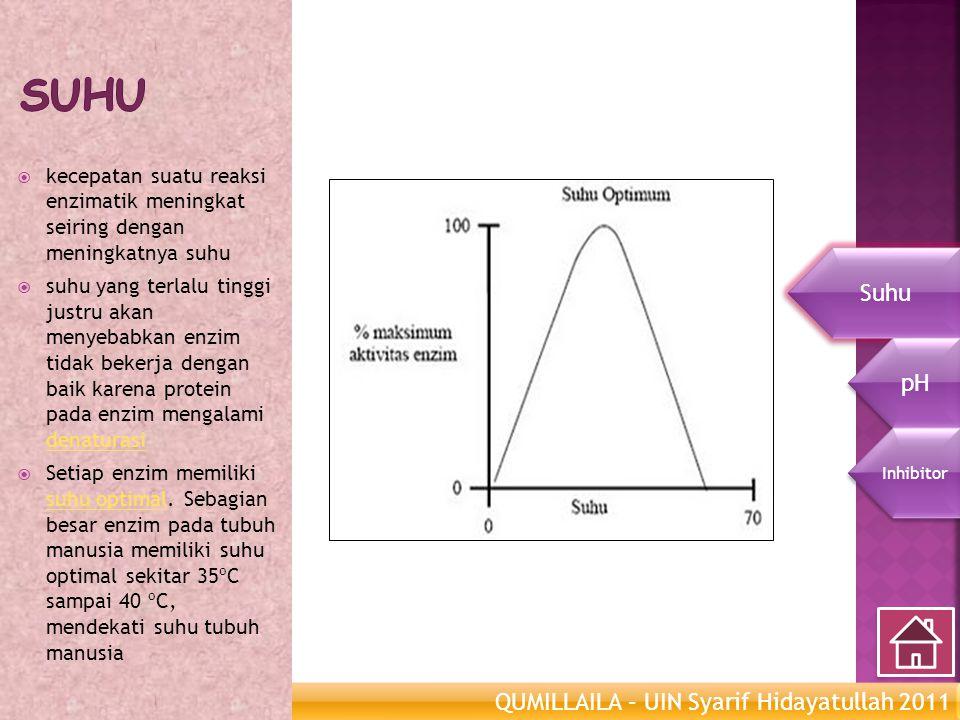 QUMILLAILA – UIN Syarif Hidayatullah 2011 Enzim Metabolisme  kecepatan suatu reaksi enzimatik meningkat seiring dengan meningkatnya suhu  suhu yang