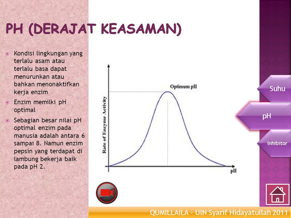 QUMILLAILA – UIN Syarif Hidayatullah 2011 Enzim Metabolisme  Kondisi lingkungan yang terlalu asam atau terlalu basa dapat menurunkan atau bahkan meno