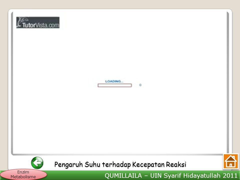 QUMILLAILA – UIN Syarif Hidayatullah 2011 Enzim Metabolisme Pengaruh Suhu terhadap Kecepatan Reaksi