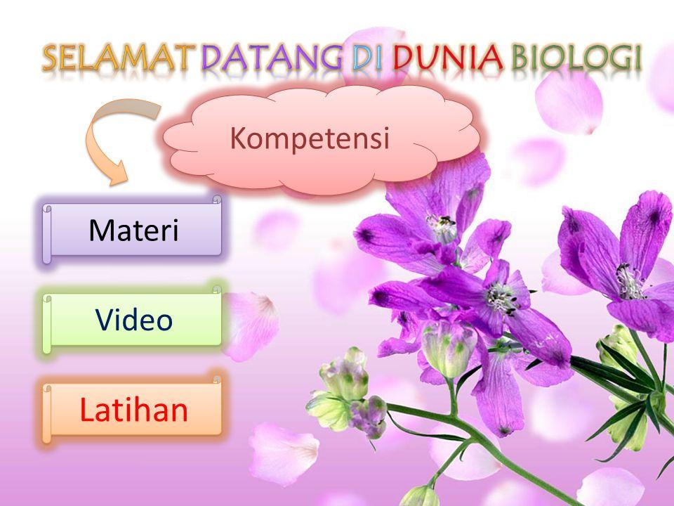 Latihan Video Materi Kompetensi