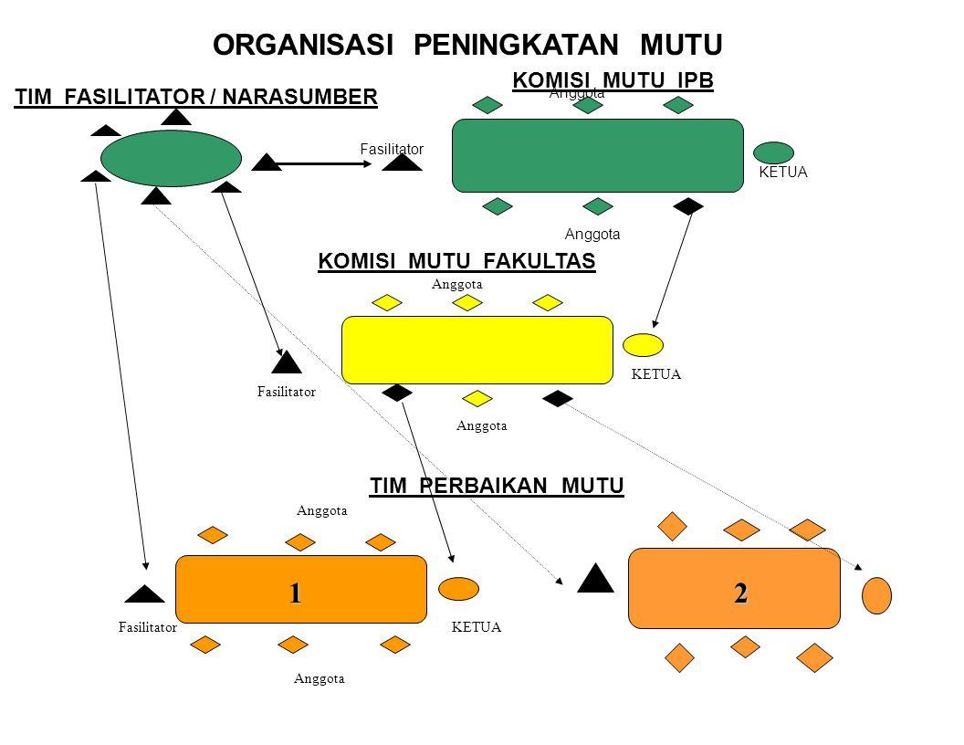 Pelaksanaan peningkatan mutu kinerja dilaksanakan oleh Tim- tim Perbaikan Mutu di semua tingkatan didukung oleh fasilitator/narasumber/pelatih. 1. Tim