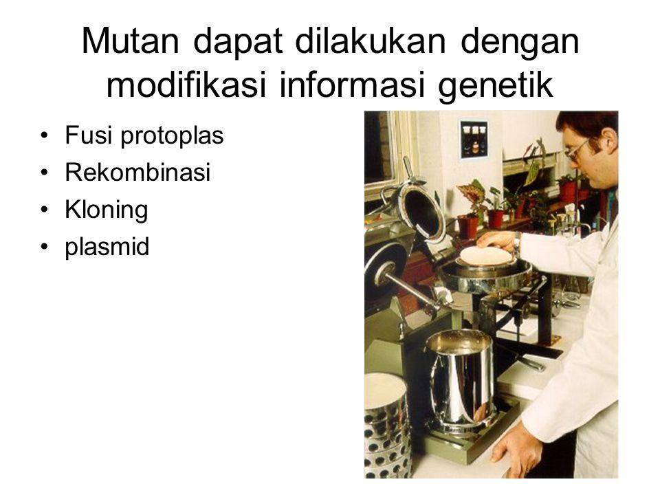 Mutan dapat dilakukan dengan modifikasi informasi genetik •Fusi protoplas •Rekombinasi •Kloning •plasmid