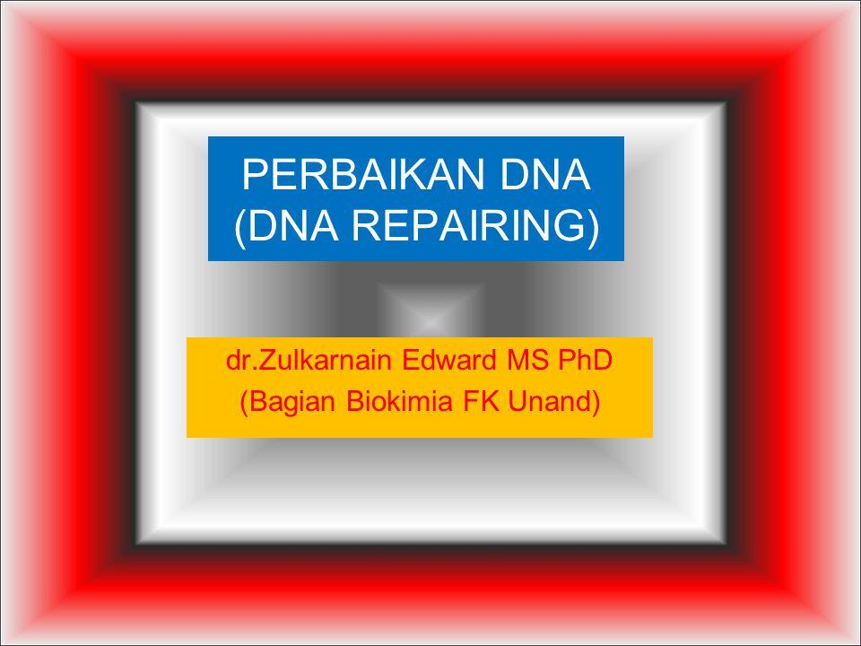 PERBAIKAN DNA (DNA REPAIRING) dr.Zulkarnain Edward MS PhD (Bagian Biokimia FK Unand)