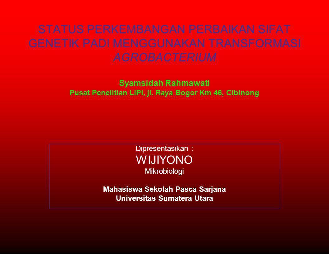 STATUS PERKEMBANGAN PERBAIKAN SIFAT GENETIK PADI MENGGUNAKAN TRANSFORMASI AGROBACTERIUM Syamsidah Rahmawati Pusat Penelitian LIPI, jl. Raya Bogor Km 4