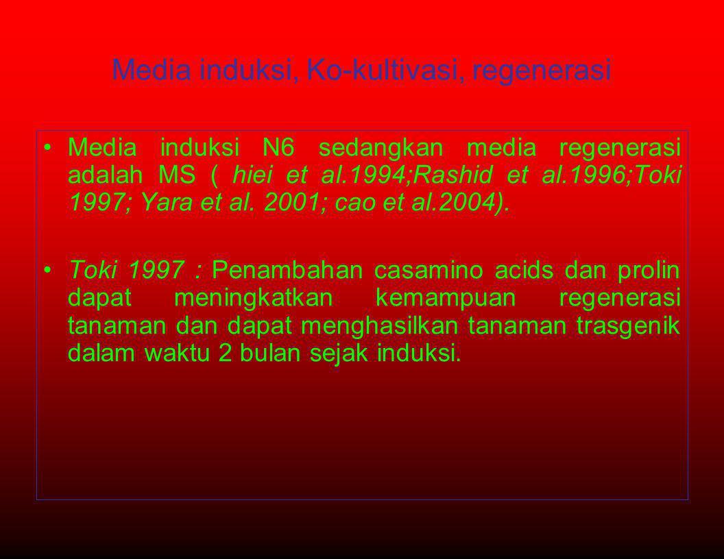Media induksi, Ko-kultivasi, regenerasi •Media induksi N6 sedangkan media regenerasi adalah MS ( hiei et al.1994;Rashid et al.1996;Toki 1997; Yara et