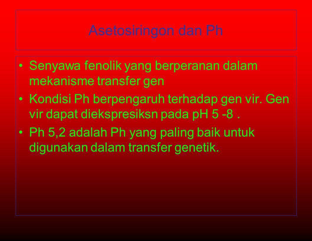 Asetosiringon dan Ph •Senyawa fenolik yang berperanan dalam mekanisme transfer gen •Kondisi Ph berpengaruh terhadap gen vir. Gen vir dapat diekspresik