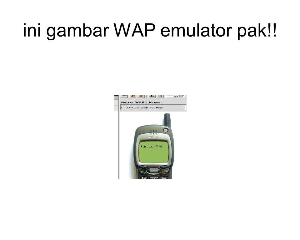 ini gambar WAP emulator pak!!