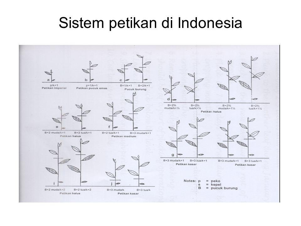 Sistem petikan di Indonesia