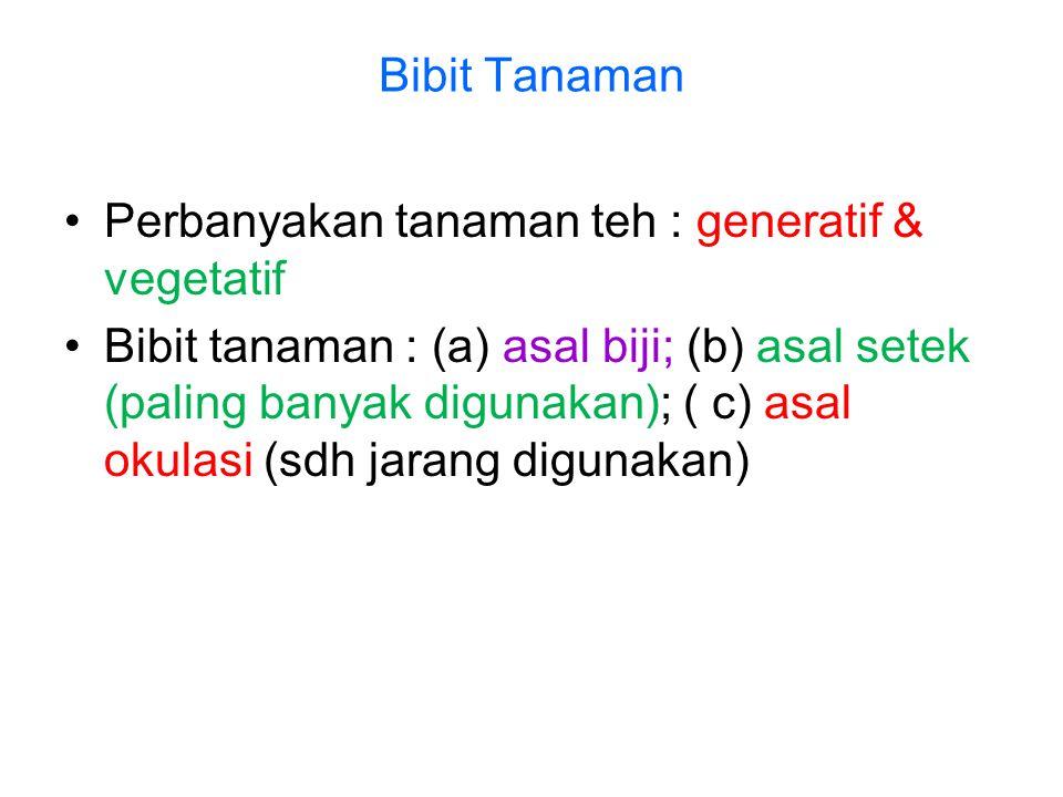 Bibit Tanaman •Perbanyakan tanaman teh : generatif & vegetatif •Bibit tanaman : (a) asal biji; (b) asal setek (paling banyak digunakan); ( c) asal oku