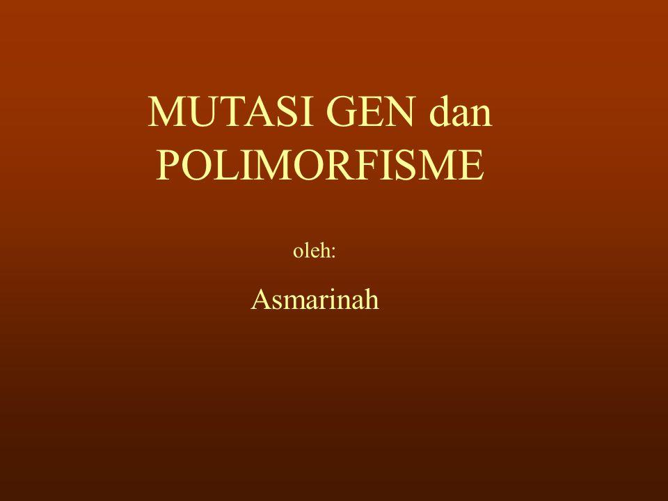 MUTASI GEN dan POLIMORFISME oleh: Asmarinah