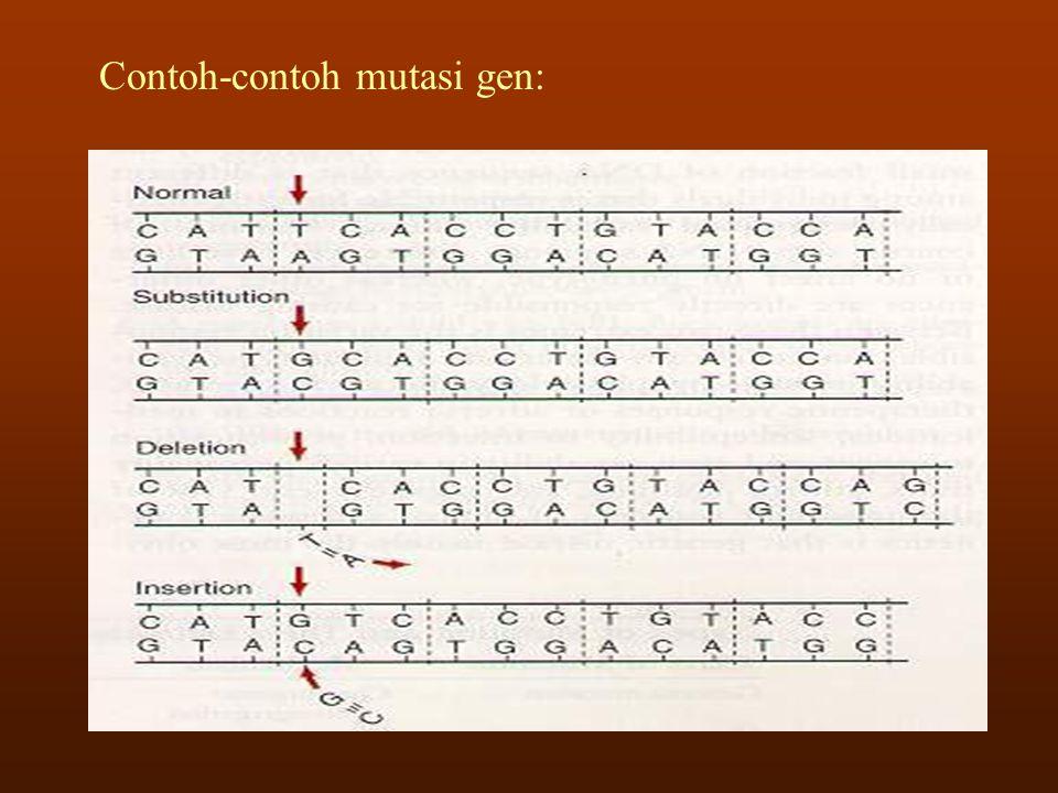 - Penyakit/kelainan yang disebabkan oleh adanya defek dalam metabolisme fenilalanin-tirosin, yang merupakan asam amino penting dalam sintesis protein