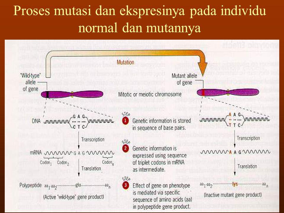 Point mutation : mutasi yang melibatkan perubahan tempat spesifik dalam suatu gen, termasuk substitusi, delesi dan insersi pasangan basa.