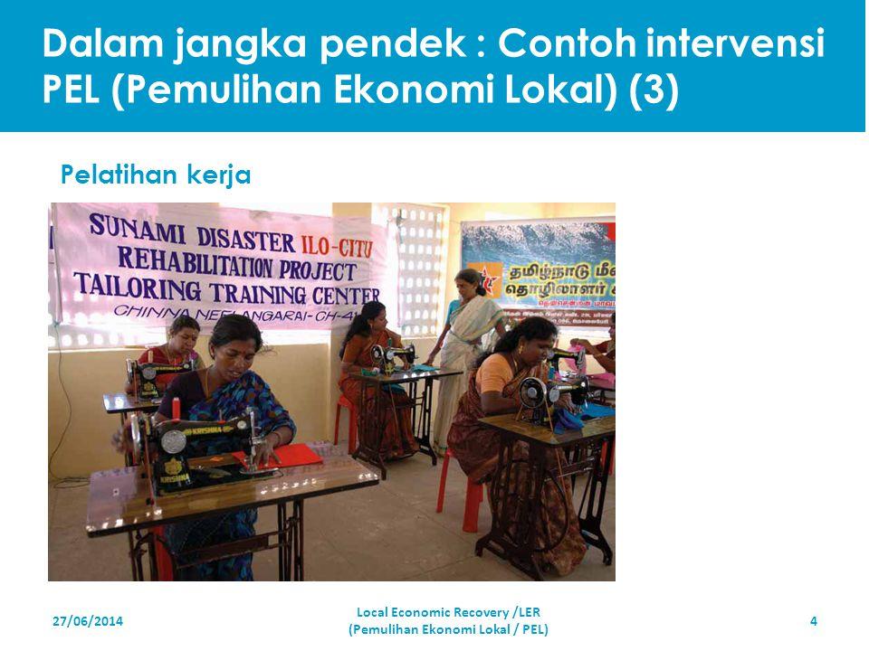 27/06/20144 Pelatihan kerja Local Economic Recovery /LER (Pemulihan Ekonomi Lokal / PEL) Dalam jangka pendek : Contoh intervensi PEL (Pemulihan Ekonom