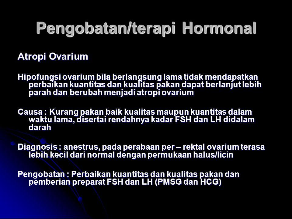Pengobatan/terapi Hormonal Atropi Ovarium Hipofungsi ovarium bila berlangsung lama tidak mendapatkan perbaikan kuantitas dan kualitas pakan dapat berl