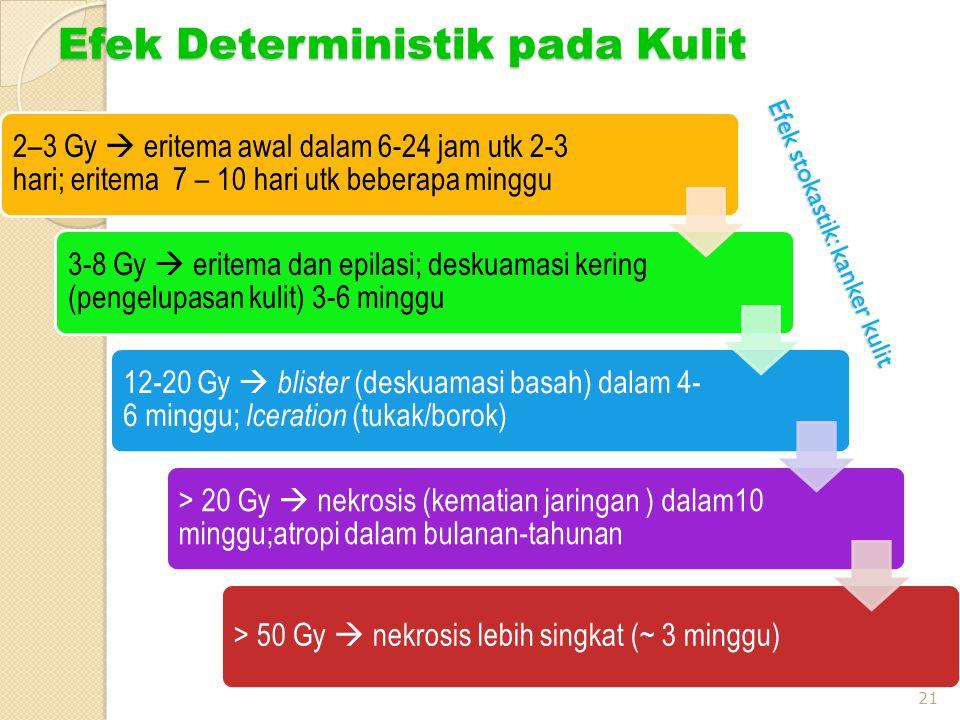 Efek Deterministik pada Kulit 21 2–3 Gy  eritema awal dalam 6-24 jam utk 2-3 hari; eritema 7 – 10 hari utk beberapa minggu 3-8 Gy  eritema dan epilasi; deskuamasi kering (pengelupasan kulit) 3-6 minggu 12-20 Gy  blister (deskuamasi basah) dalam 4- 6 minggu; lceration (tukak/borok) > 20 Gy  nekrosis (kematian jaringan ) dalam10 minggu;atropi dalam bulanan-tahunan > 50 Gy  nekrosis lebih singkat (~ 3 minggu) Efek stokastik: kanker kulit