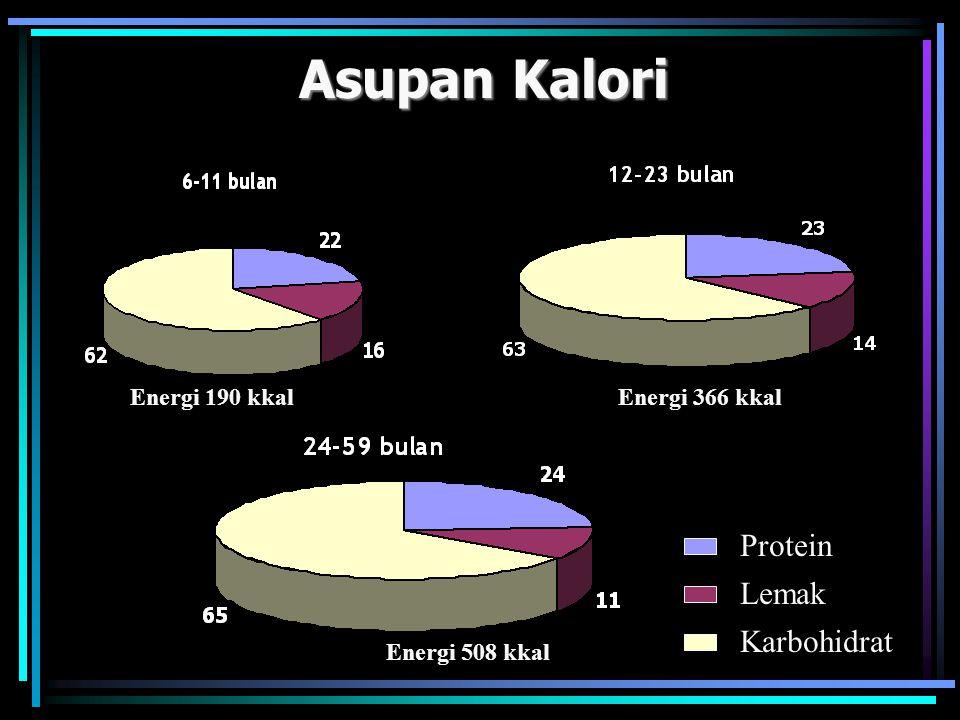 Asupan Kalori Energi 190 kkalEnergi 366 kkal Energi 508 kkal Protein Lemak Karbohidrat