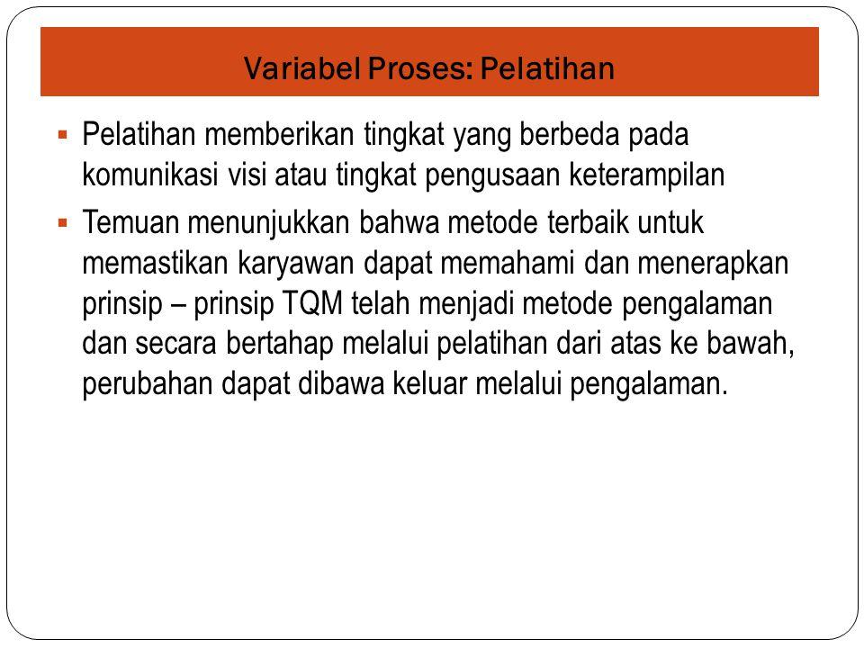 Variabel Proses: Pelatihan  Pelatihan memberikan tingkat yang berbeda pada komunikasi visi atau tingkat pengusaan keterampilan  Temuan menunjukkan b